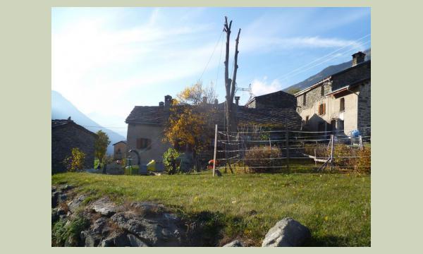 Elagage Saint-Jean-de-Maurienne